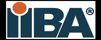 business-analysis-logo